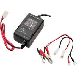 Ładowarka akumulatorów żelowych 12V 6Ah-20Ah automat / 4972
